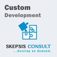 Custom Programming Services & Solutions